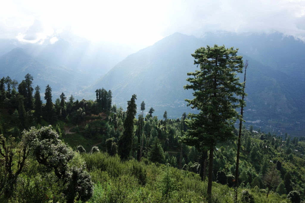 Yoga Courses in India, Naggar, Manali